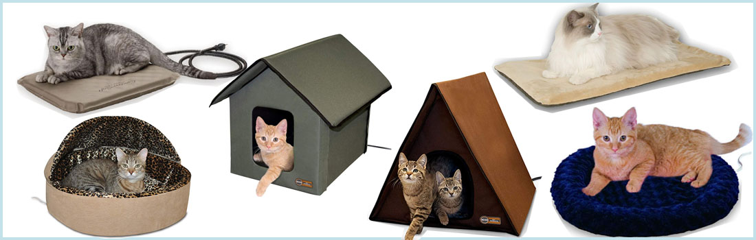 Best Heated Cat Beds Reviewed