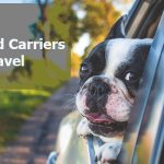 Top 8 Best Dog Crates and Carriers for Car Travel