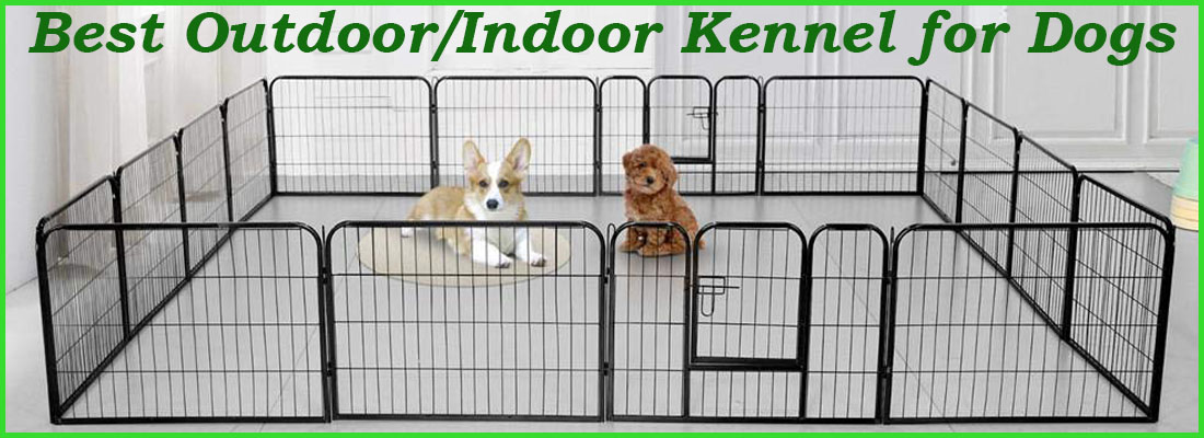 10 Best Outdoor Kennel