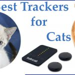 Best Tracke