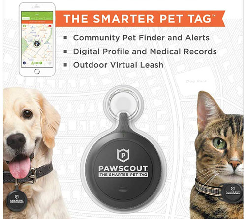 Pawscout Pet Tag