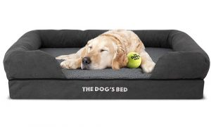 The Dog's Balls The Dog's Bed | Orthopedic Bolstered Bed