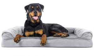 FurHaven™ Dog Bed | Orthopedic & Suede Sofa-Style