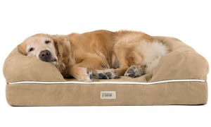 Friends Forever 100% Suede Orthopedic Dog Bed