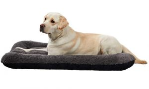 ANWA Washable Dog Crate Bed