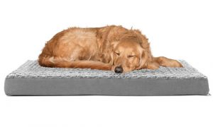 FurHaven™ Dog Bed Orthopedic Pillow Cushion