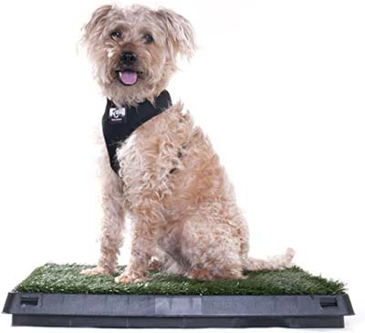 Pet Supply Dog Potty Pad with Artificial Grass