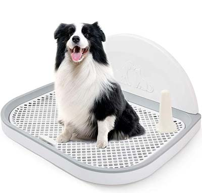 Puppy Dog Potty Tray