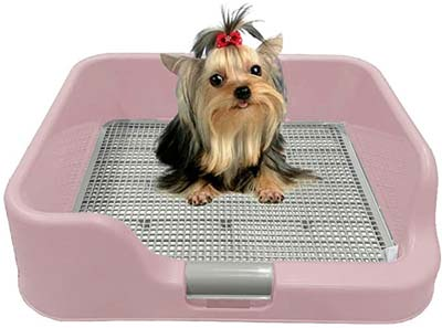Korea Dog Charge Indoor Dog Potty Tray