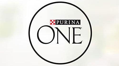 Purina One Brand